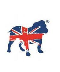 Bulldog Security Products Ltd