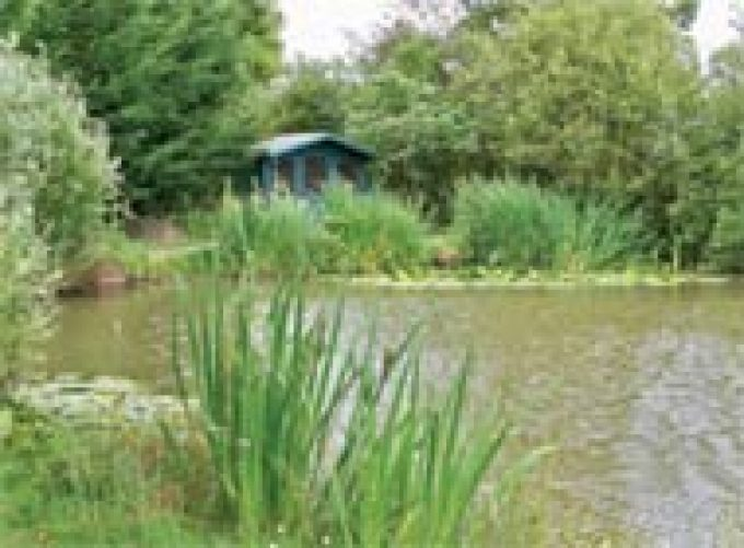 Trench Farm Fisheries & Touring Park