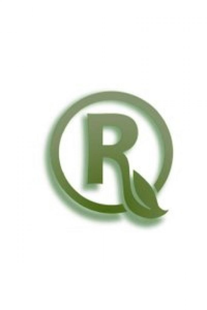 Raemor Services